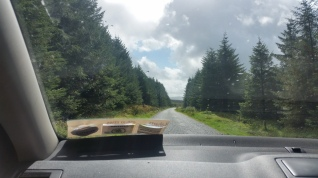 Driving through the Wicklow Gap